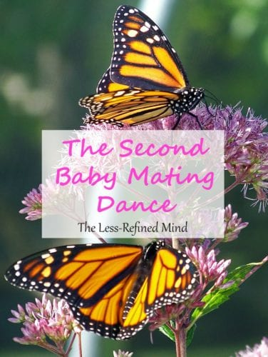 The Second Baby Mating Dance