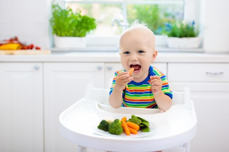 Toddler Sitting in Highchair Eating; Baby Led Weaning Gagging and Choking Are a Concern, But If They Can Sit Up Independently and You Stay With Them, They Should Be Perfectly Safe.