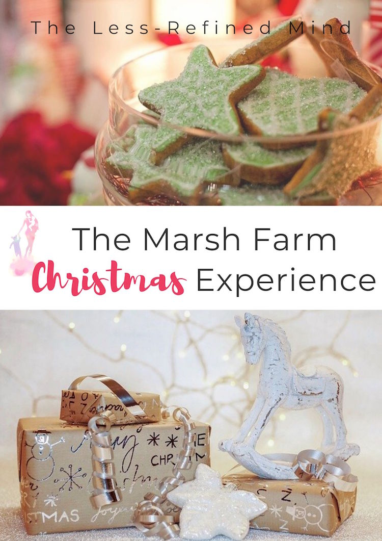 Full review of the Marsh Far, Christmas Experience in Essex. #christmas #grotto #essex