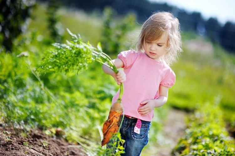 Summer Activities for Kids - Child Holding Carrot