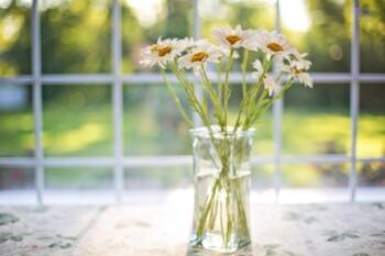 Gazumped - Flowers