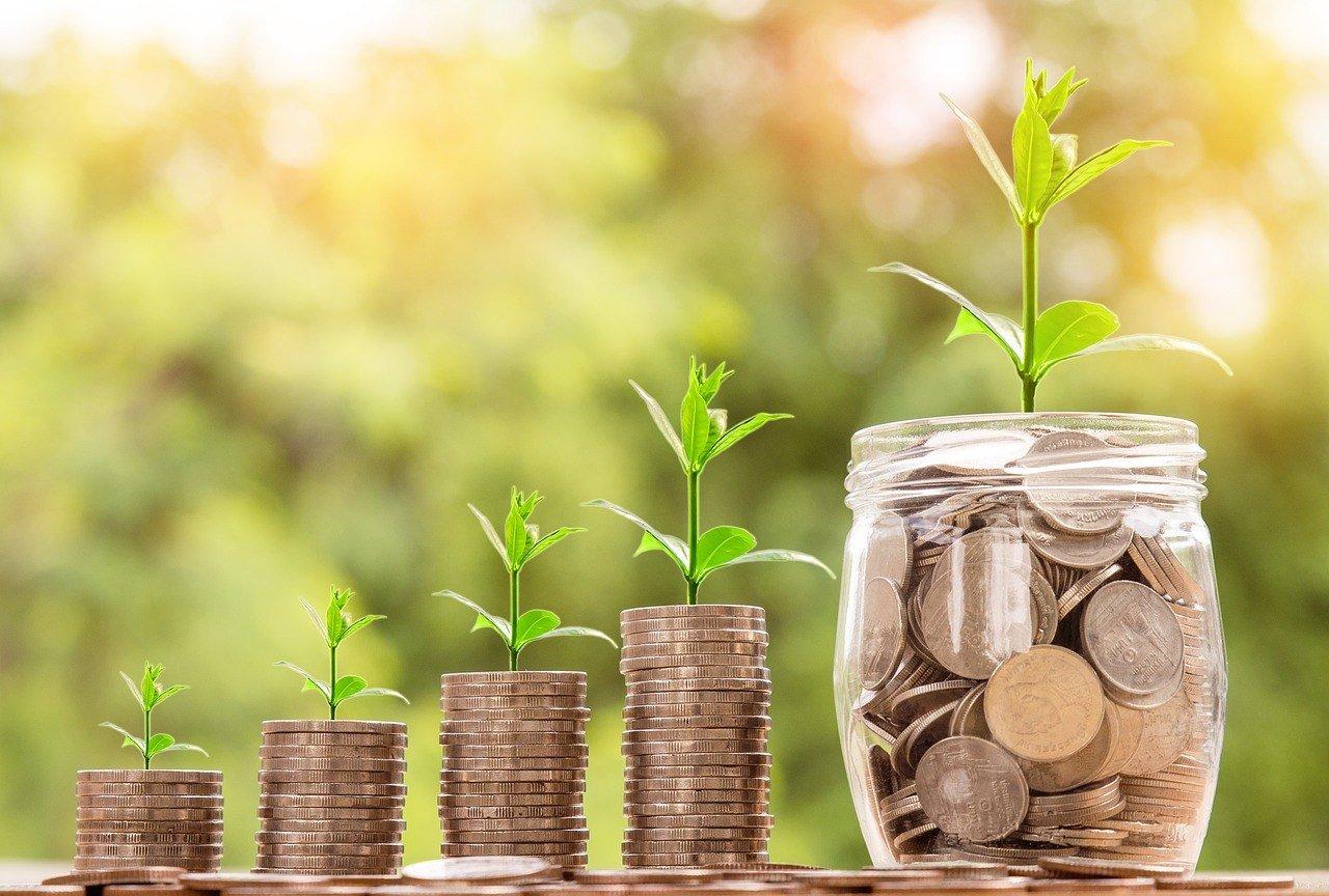 Money Trees: Preschool Pressure to Fundraise