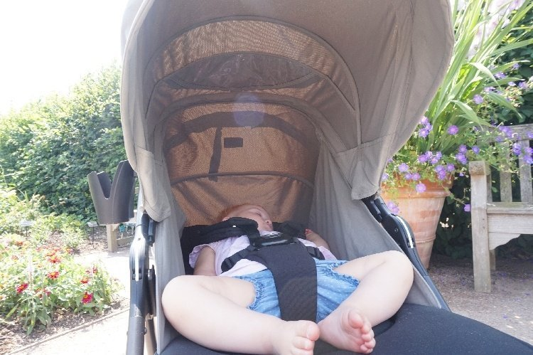 Mamas and Papas Armadillo Review - Canopy
