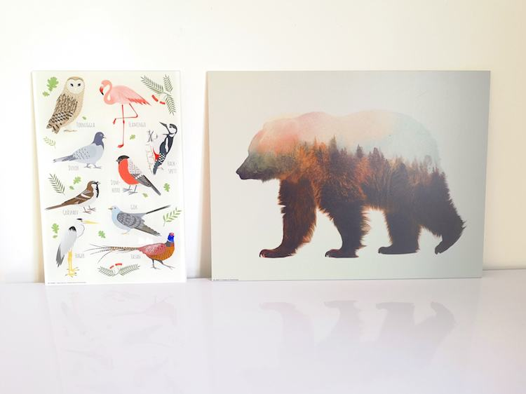 Bird Print and Bear Print