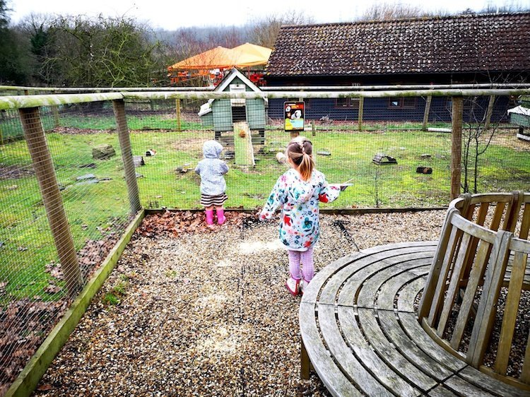 Lee Valley Park Farms Review -
