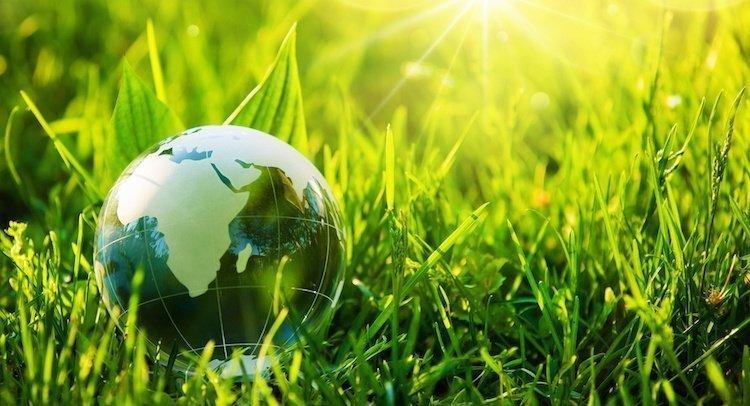 Glass Globe on Grass
