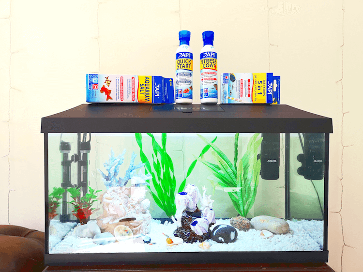 Tropical Fish Tank and API Products
