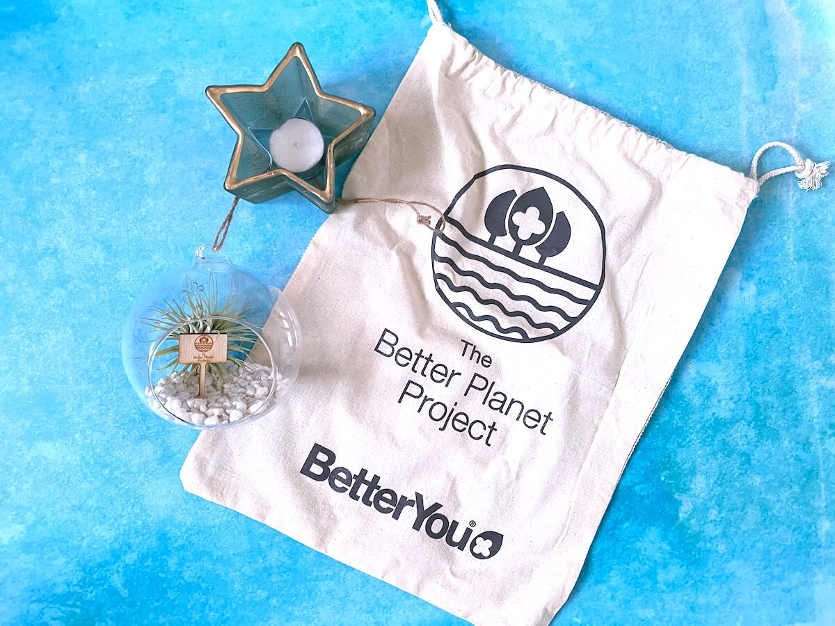 Disadvantages of recycling. Image shows an air plant, branded hessian bag, and light green star-shaped candle.