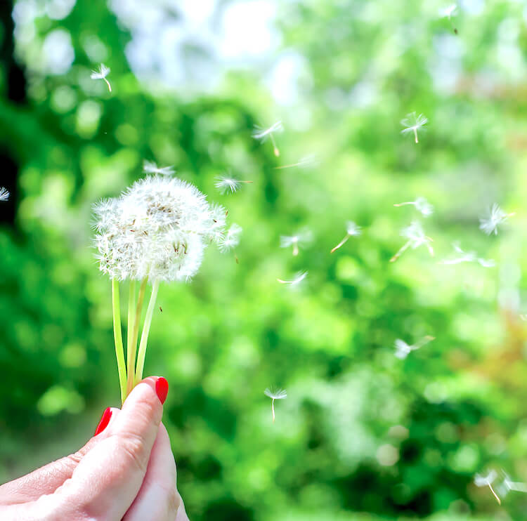 Daily affirmations   Image shows a woman with red nails holding a dandelion clock.