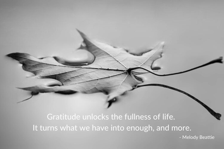Gratitude quote: Gratitude unlocks the fullness of life. It turns what we have into enough, and more. Image shows a leaf floating on water, in black and white.