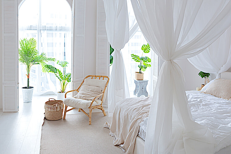 Living simply | Image shows a minimalist bedroom, with white curtains around a white bed, and a couple of tall potted plants.