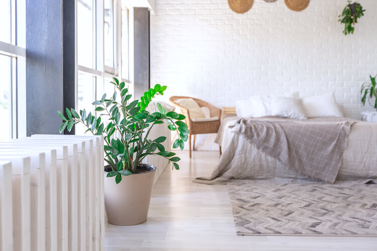 Simple living | Image shows a minimalist bedroom, with a large plant pot in the foreground and a white bed with a grey throw over it in the background.