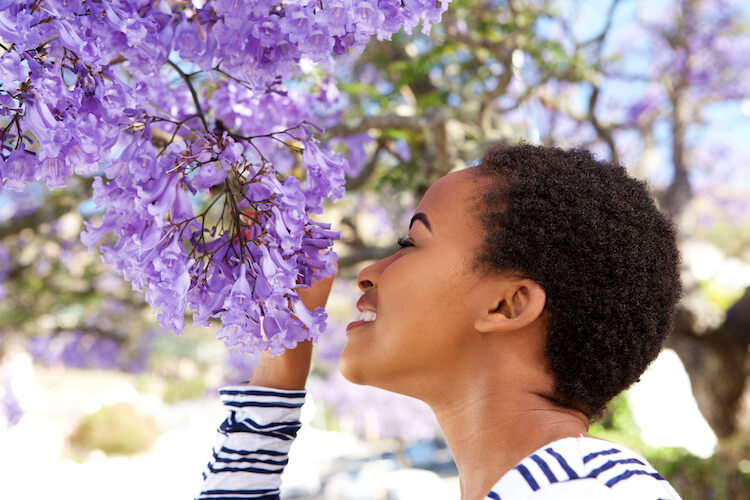 Image shows a beautiful black woman smelling purple blossom.